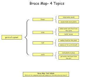 Creating essay or short answer questions - lyndacom