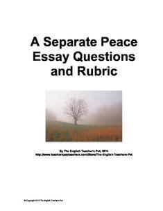 Grading essay questions blackboard